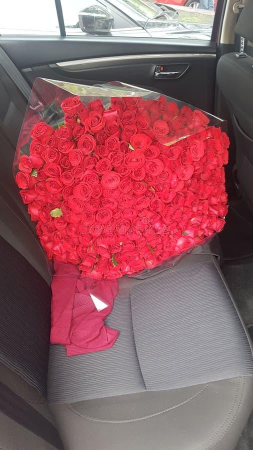 Rosas 免版税库存图片