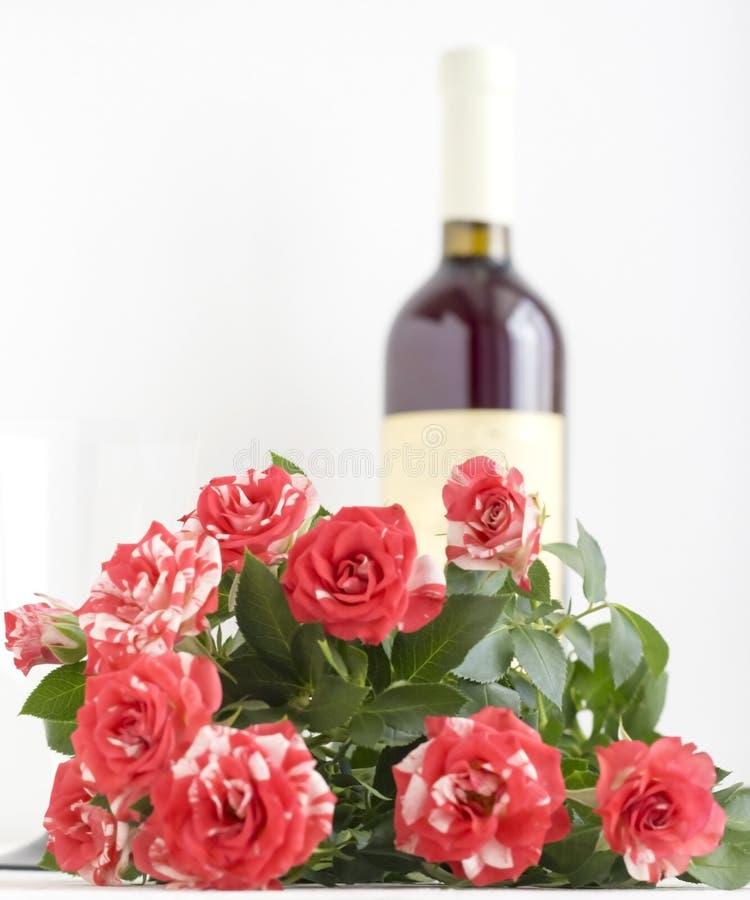 Rosas abigarradas rojas en el fondo blanco con la botella de vino en el fondo con el espacio de la copia imagen de archivo