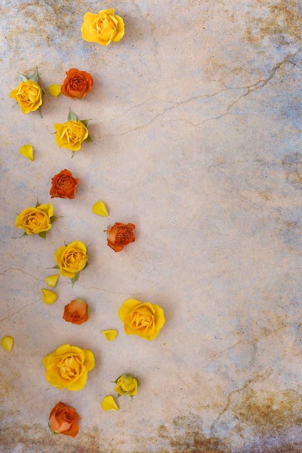 Rosas alaranjadas e amarelas no fundo rústico fotos de stock royalty free
