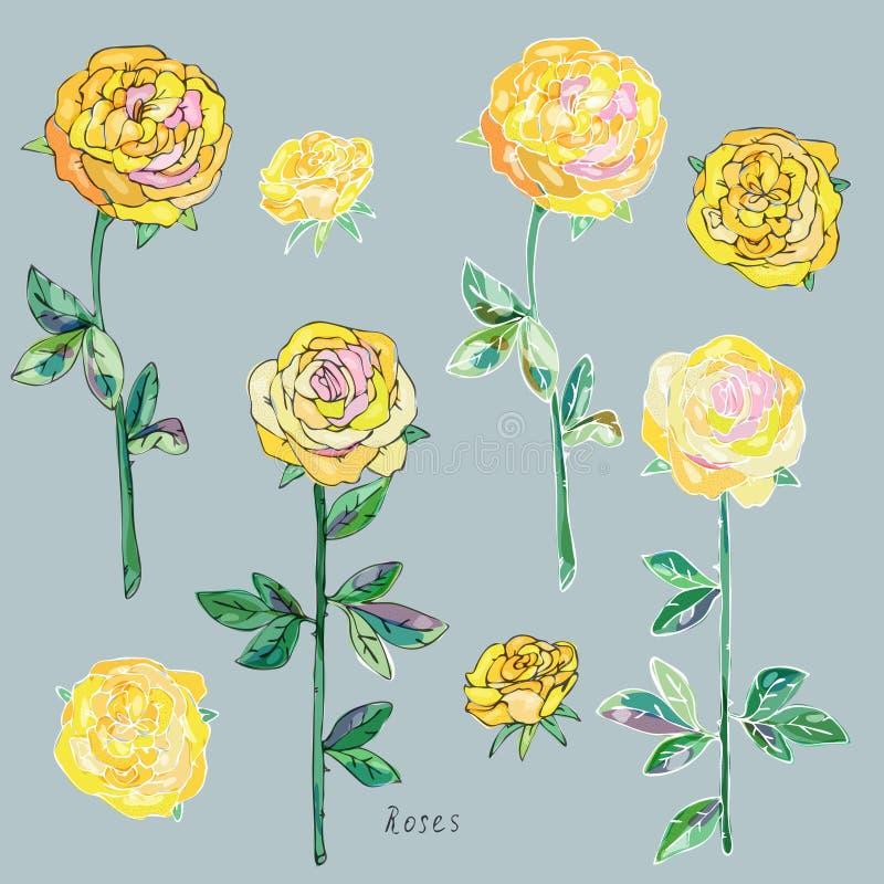 Rosas amarillas con las hojas verdes y troncos en un fondo gris Imitación de la acuarela Modelo inconsútil Ilustración del vector stock de ilustración