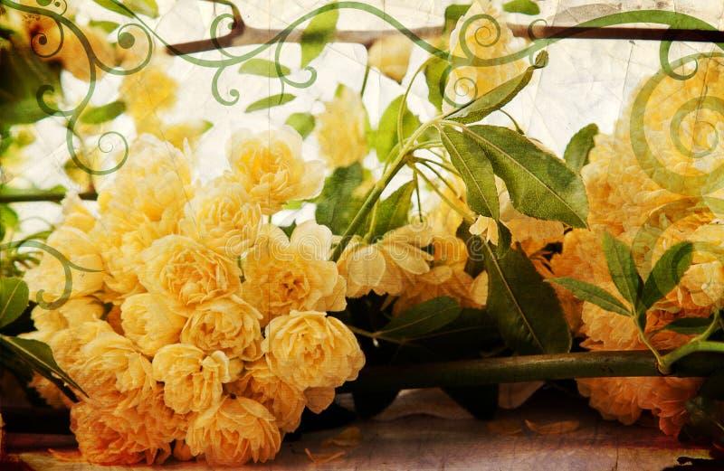 Rosas amarillas de la vendimia, paisaje foto de archivo libre de regalías