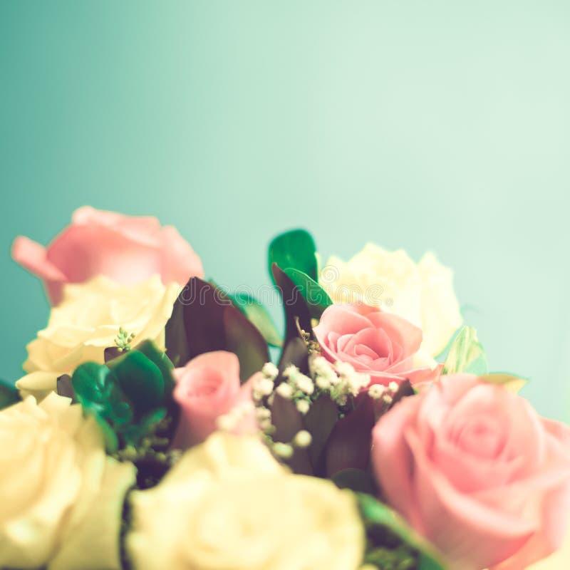 Rosas amarillas y rosadas imagen de archivo