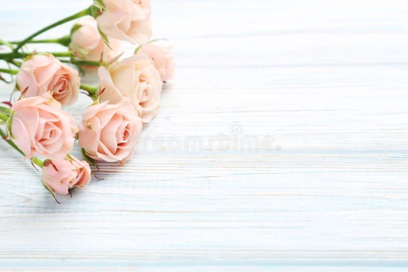 Rosas amarillentas foto de archivo