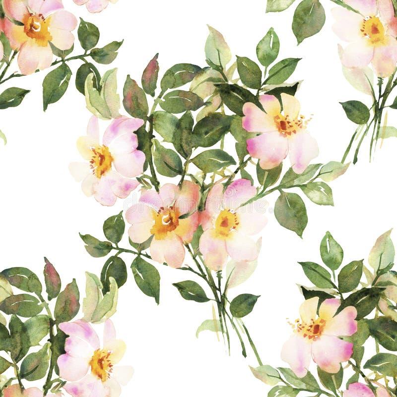 Rosas blancas en modelo inconsútil de la acuarela del flor ilustración del vector