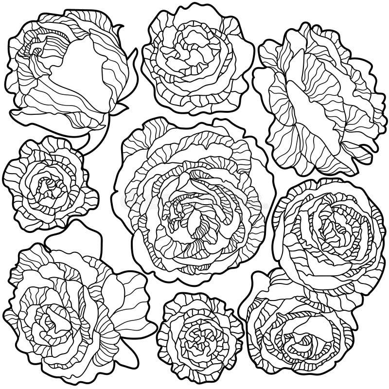 Rosas blancos y negros de las flores del fondo libre illustration