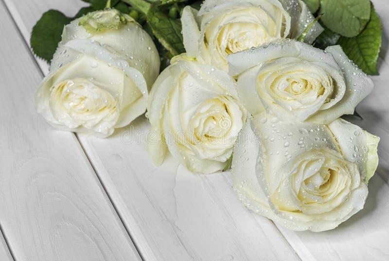 Rosas brancas nas placas brancas foto de stock
