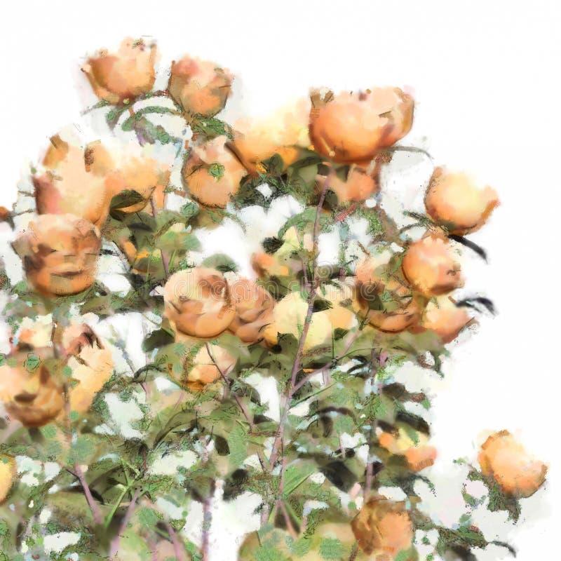 Rosas Bush de la acuarela de la flor ilustración del vector