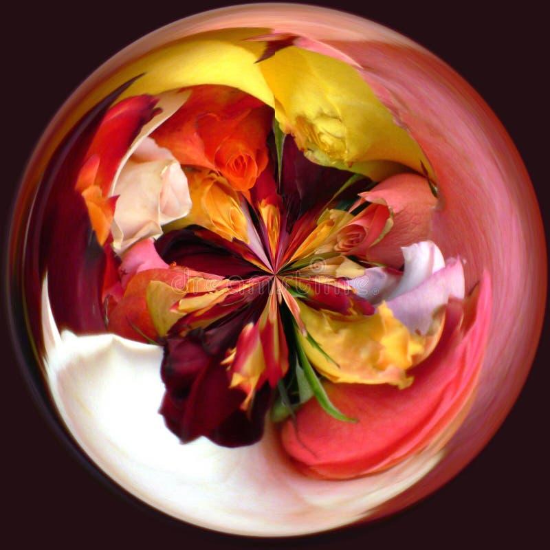 Rosas coloreadas redondeadas fotos de archivo libres de regalías