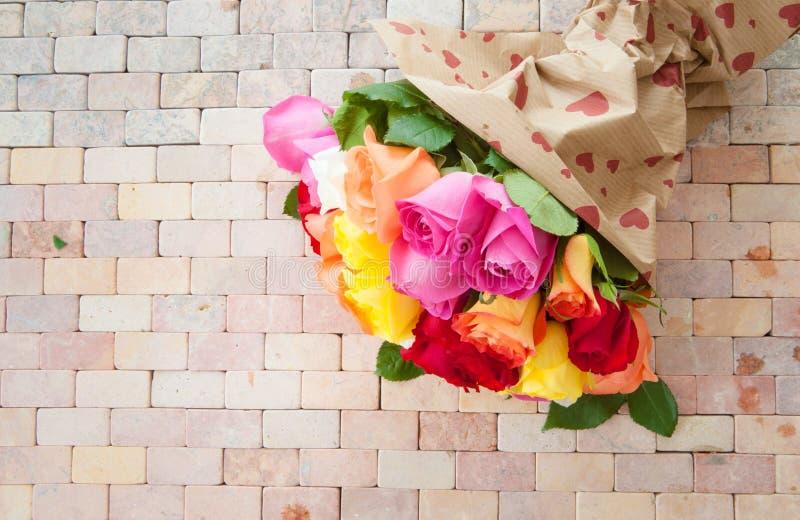 Rosas coloridas brillantes fotografía de archivo libre de regalías