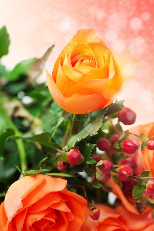 Rosas coloridas con el bokeh fotografía de archivo