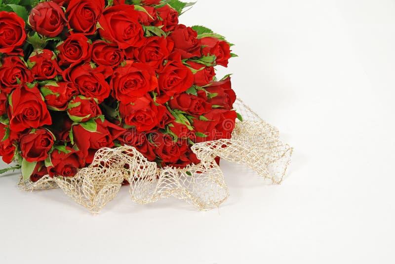 Rosas com amor imagem de stock