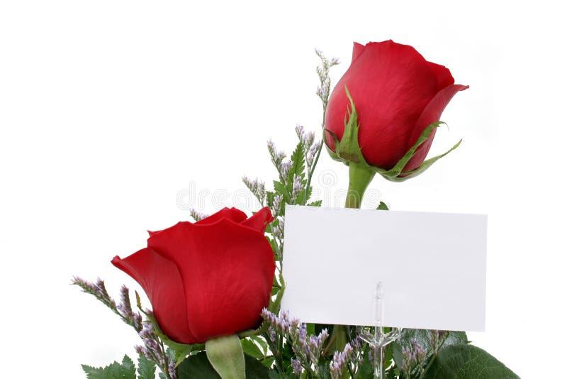 Rosas com cartão do presente (imagem 8.2mp) fotografia de stock royalty free