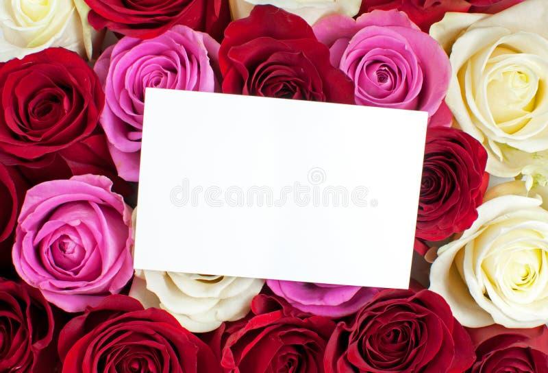 Rosas com cartão em branco imagens de stock royalty free