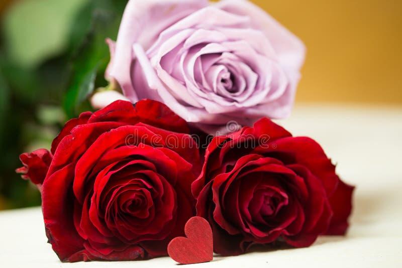 Rosas com coração imagens de stock