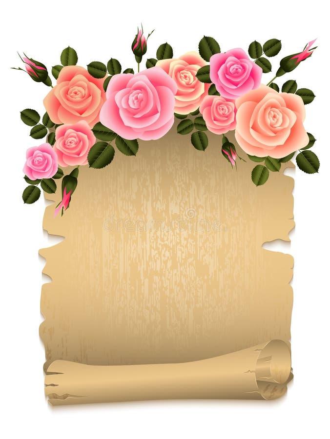 Rosas com papiro ilustração do vetor