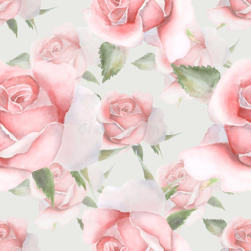 Rosas cor-de-rosa da aquarela Teste padrão sem emenda ilustração royalty free