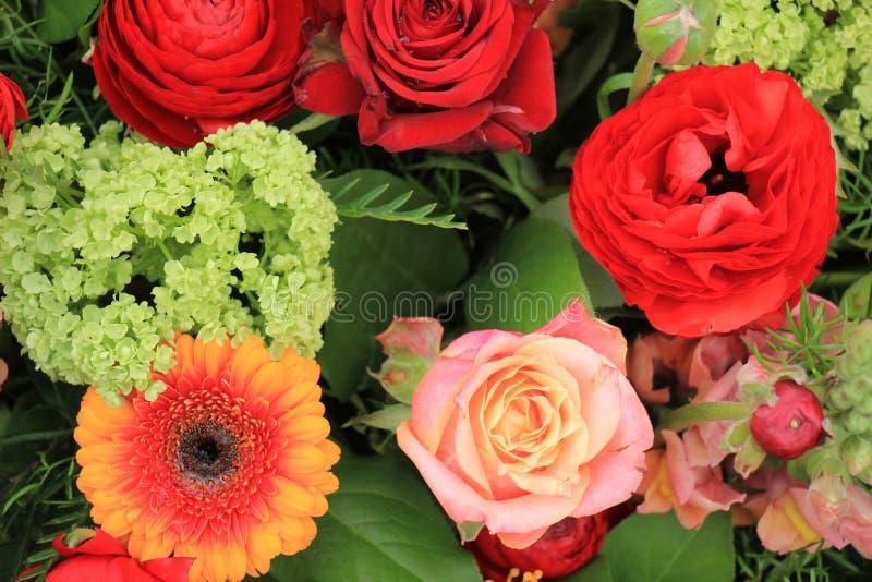 Rosas cor-de-rosa e camelia vermelho fotografia de stock royalty free