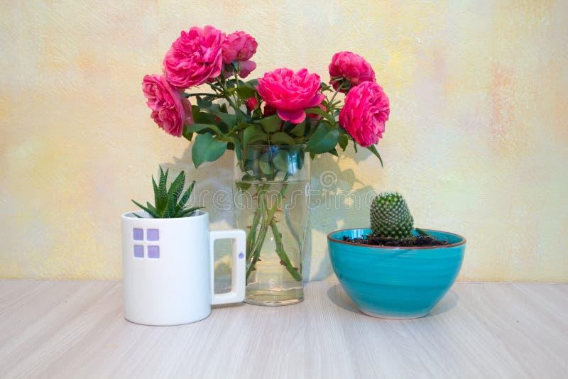 Rosas cor-de-rosa em um vaso de vidro, planta carnuda em um cacto de vidro branco em uma bacia cerâmica azul fotografia de stock royalty free