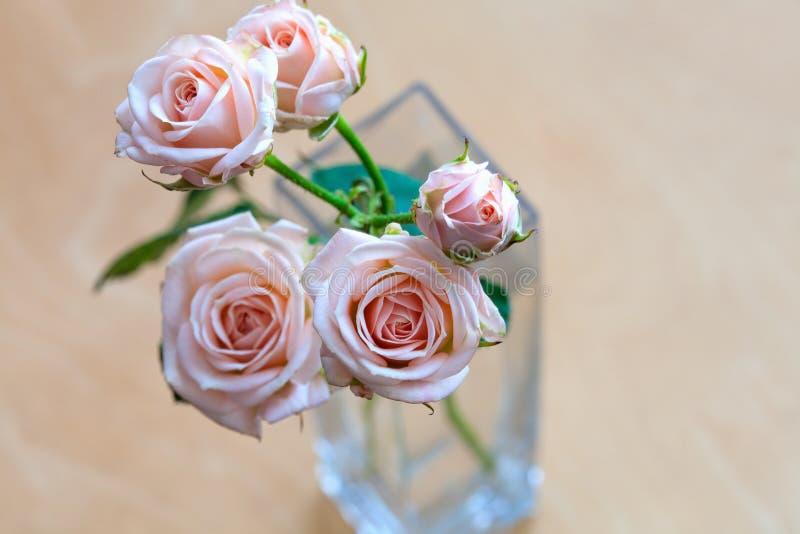 Rosas cor-de-rosa em um vaso em uma mesa de madeira imagem de stock royalty free