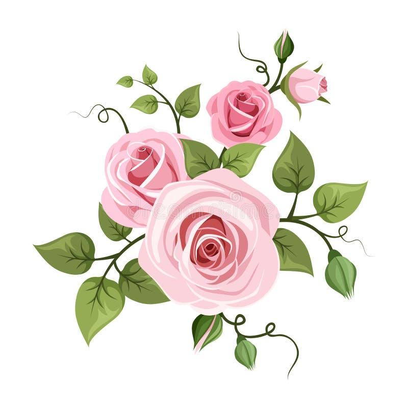 Rosas cor-de-rosa. Ilustração do vetor. ilustração stock