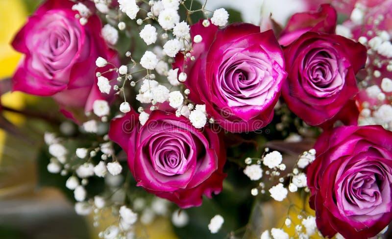 Rosas cor-de-rosa no ramalhete Presente romance Flores imagem de stock