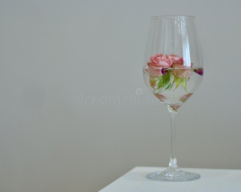 Rosas cor-de-rosa no vidro foto de stock