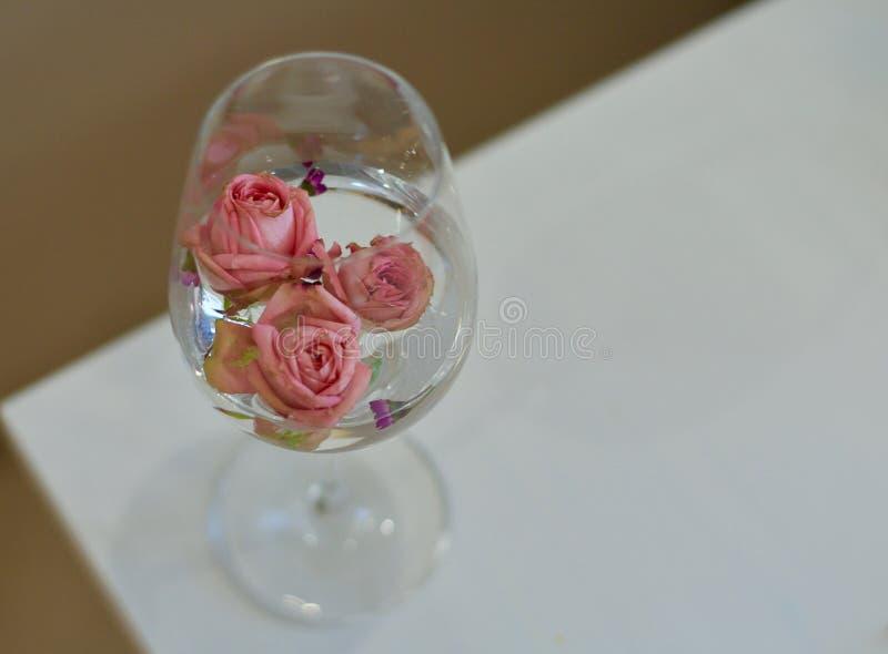 Rosas cor-de-rosa no vidro imagem de stock royalty free