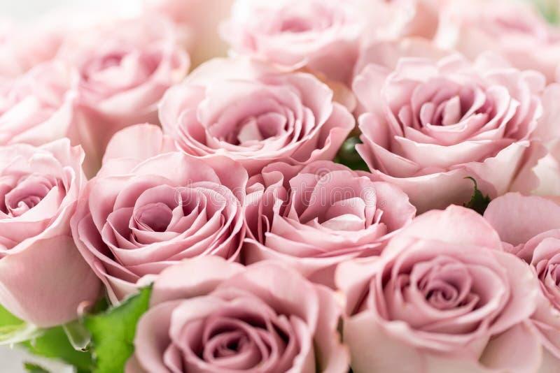 Rosas cor-de-rosa nos vasos de vidro Cor pastel do grupo o conceito de um florista em um florista wallpaper foto de stock