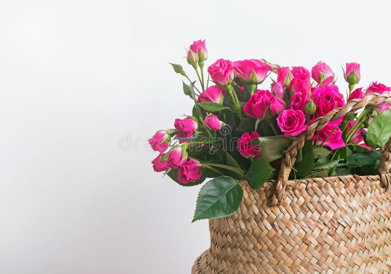 Rosas cor-de-rosa pequenas bonitas no close-up da cesta imagens de stock