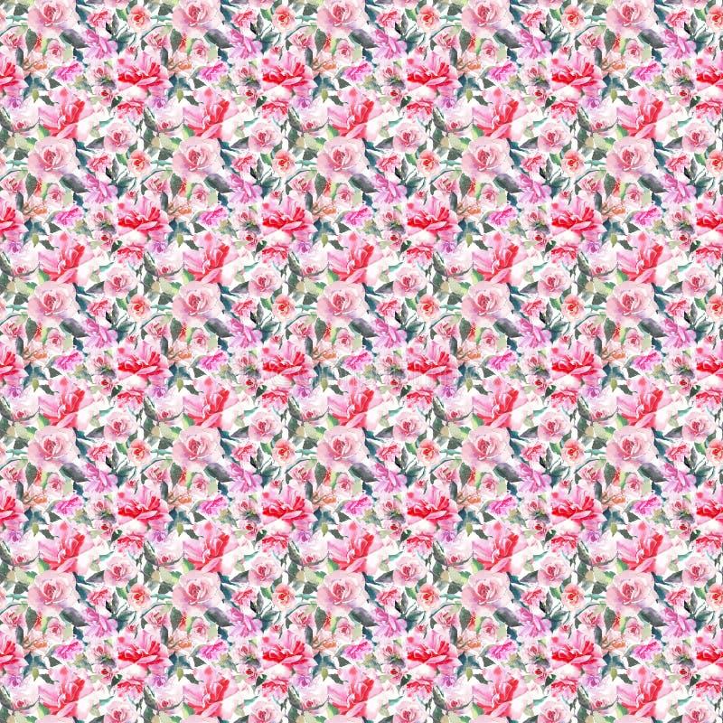 Rosas cor-de-rosa pulverulentos vermelhas botânicas ervais florais da mola bonito bonita maravilhosa sofisticada delicada macia b fotos de stock