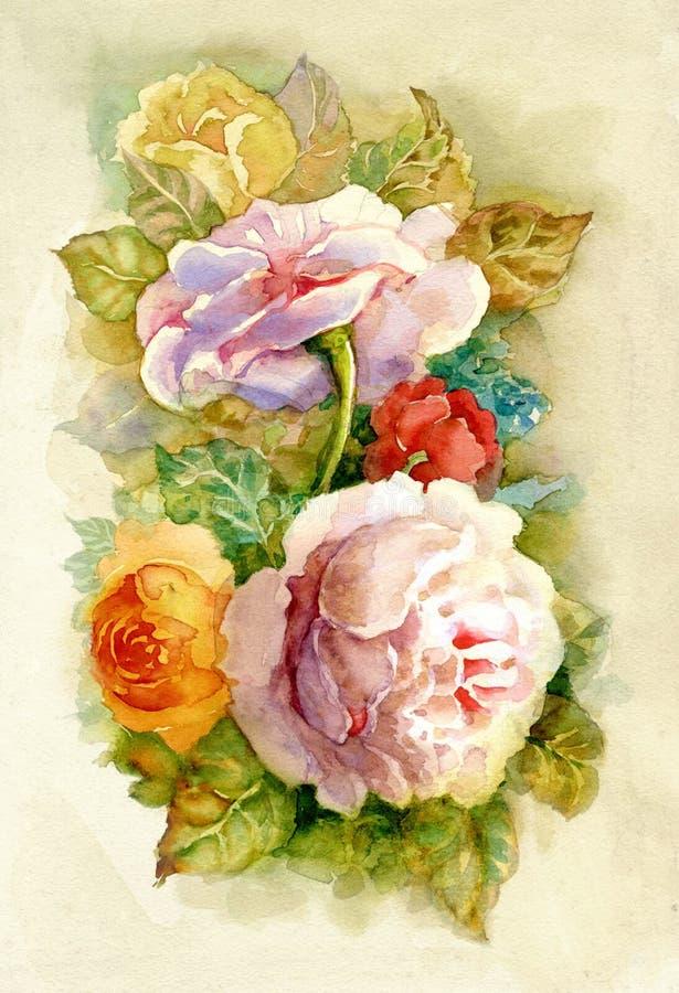 Rosas da aguarela ilustração royalty free
