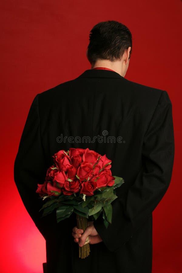 Rosas da terra arrendada do homem atrás de seu para trás imagens de stock