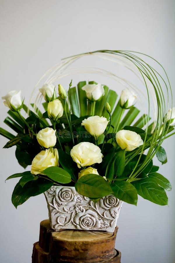 Rosas de Ecru imágenes de archivo libres de regalías