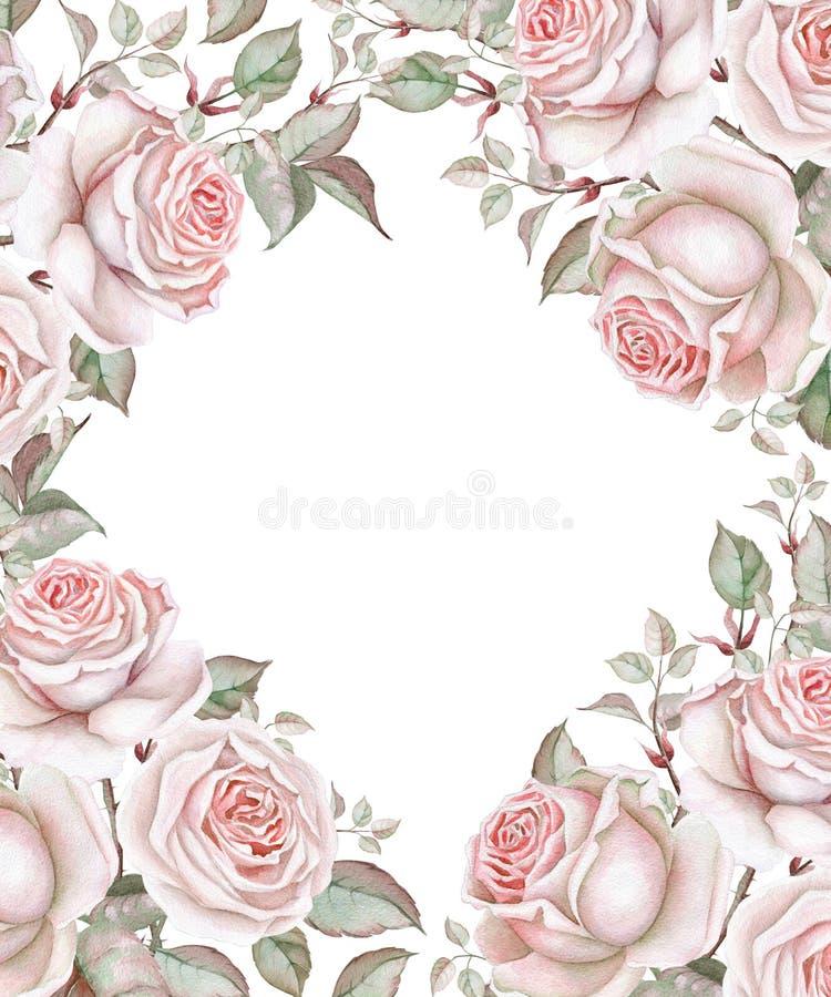 Rosas de la acuarela en el fondo blanco Marco floral ilustración del vector