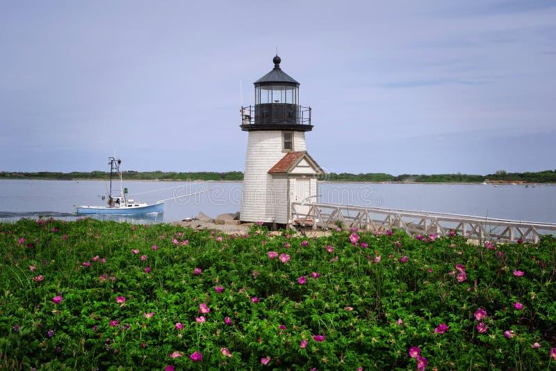 Rosas de la playa por el barco de pesca rector del faro de la isla de Natucket foto de archivo libre de regalías