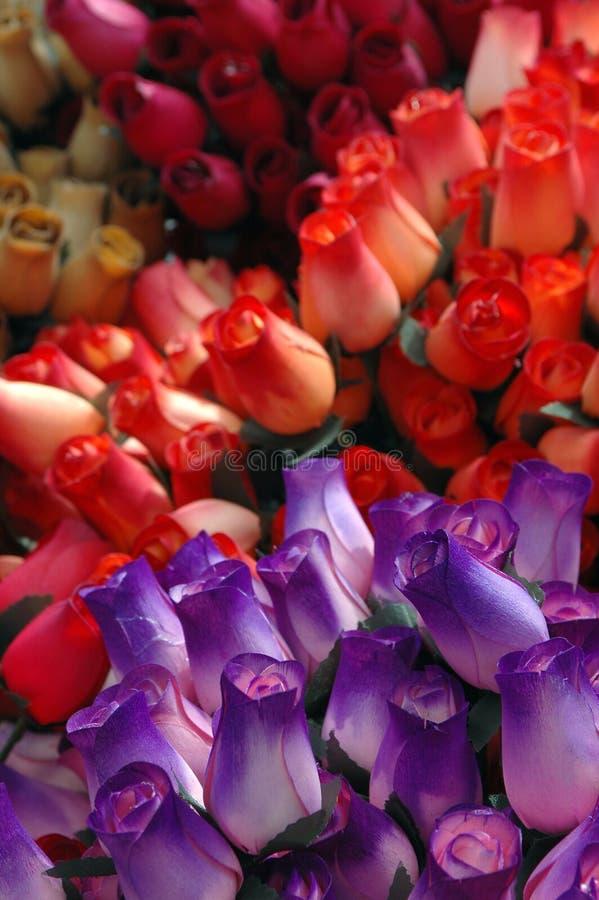 Rosas de papel imagem de stock royalty free