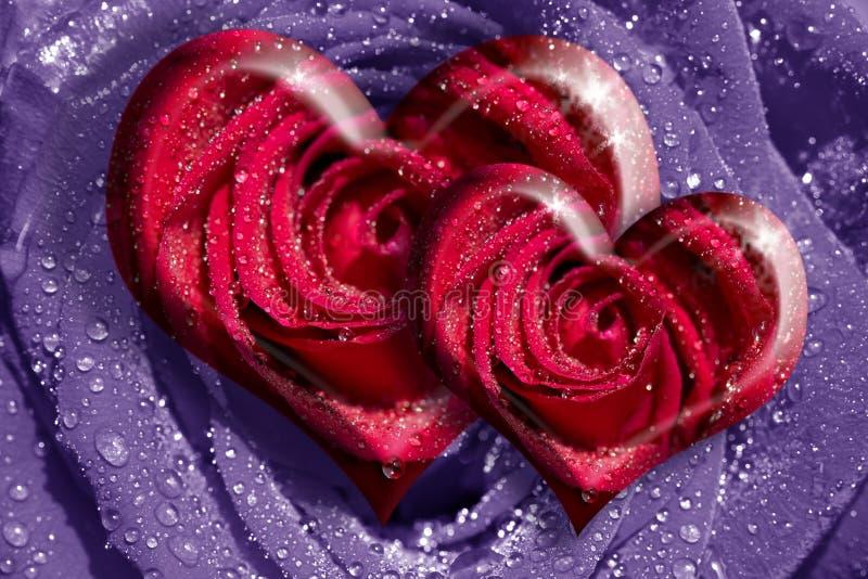 Rosas del corazón fotos de archivo libres de regalías