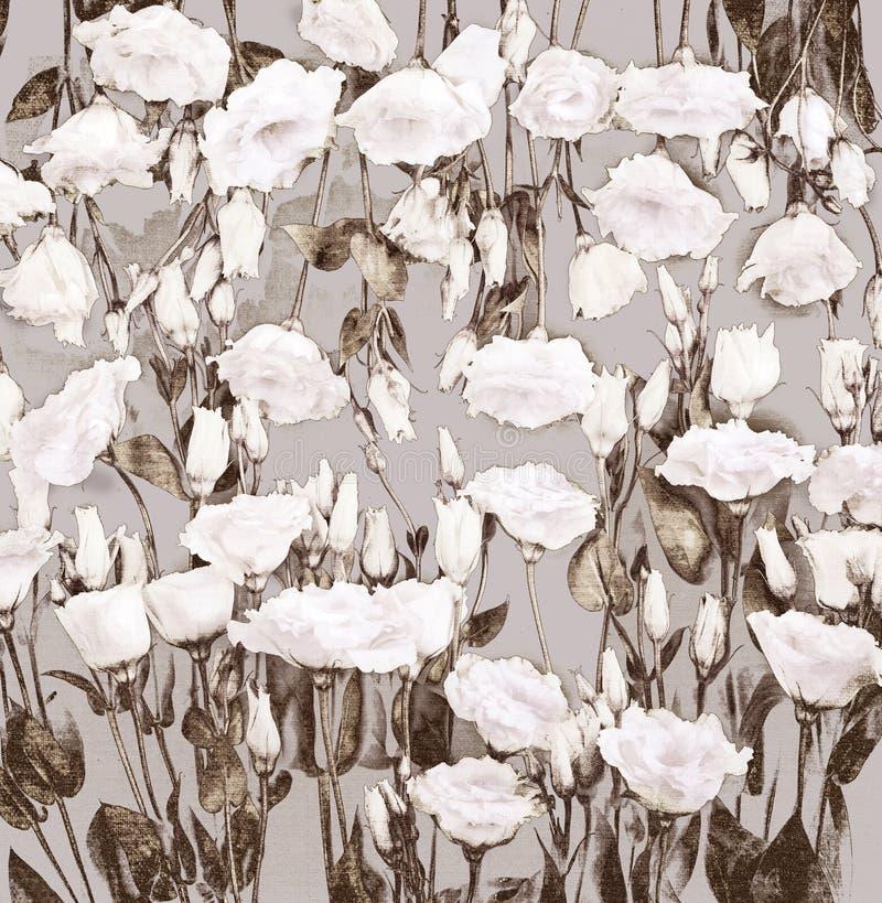 Rosas del pastel de la acuarela ilustración del vector