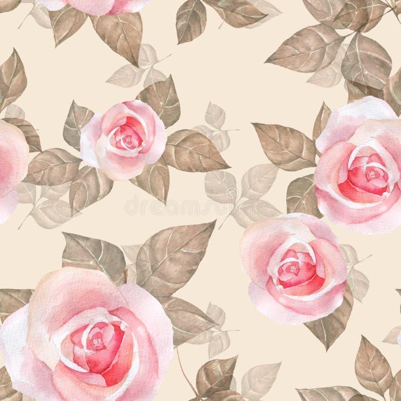 Rosas delicadas Teste padrão sem emenda floral 7 da aquarela ilustração royalty free