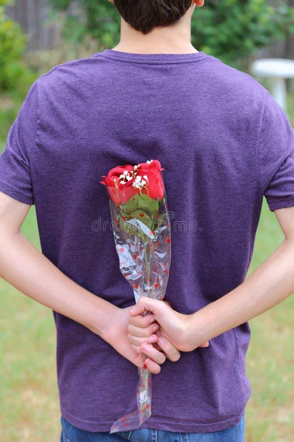 Rosas detrás de la parte posterior imagenes de archivo