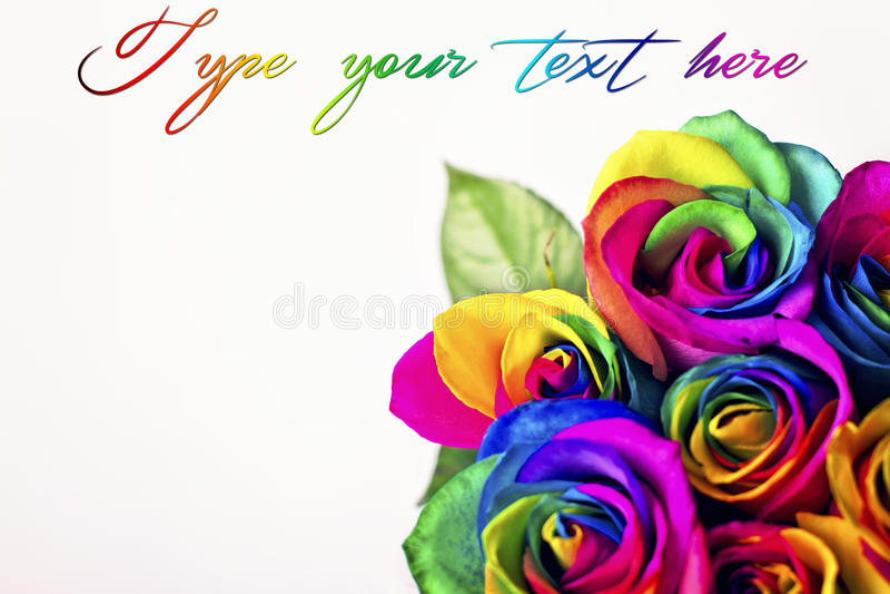 Rosas do arco-íris nos tijolos brancos e no fundo de madeira Cartão para o dia do ` s do Valentim e do ` s da mãe fotografia de stock royalty free
