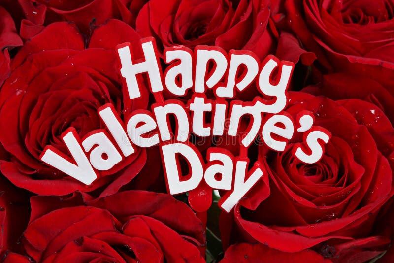 Rosas do dia dos Valentim foto de stock royalty free