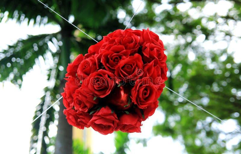Download Rosas Do Vermelho Do Coração Foto de Stock - Imagem de se, pares: 26511482
