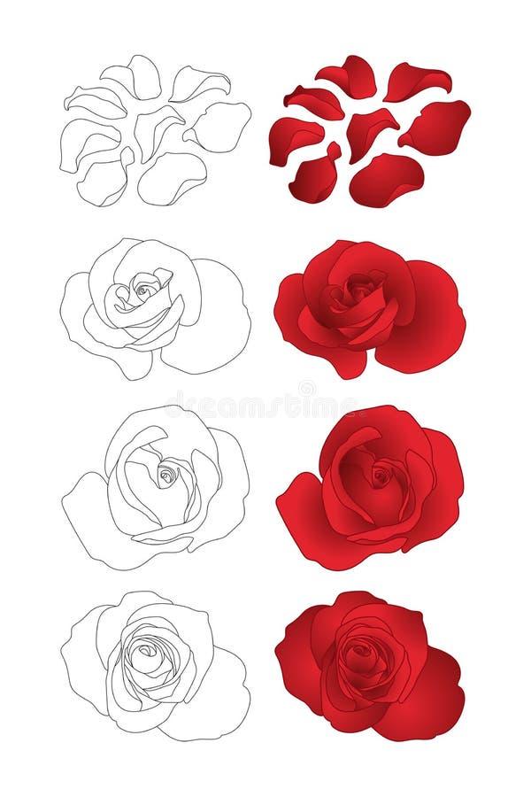 Rosas do vetor ajustadas ilustração royalty free
