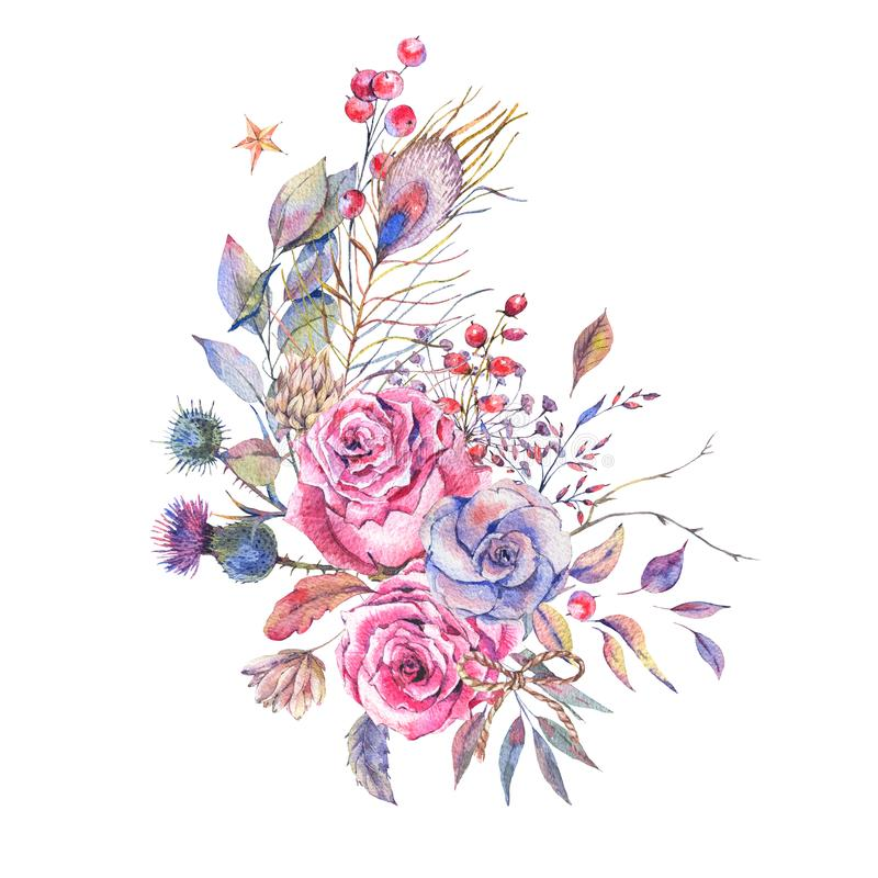 Rosas do vintage da aquarela, cardos, wildflowers ilustração stock