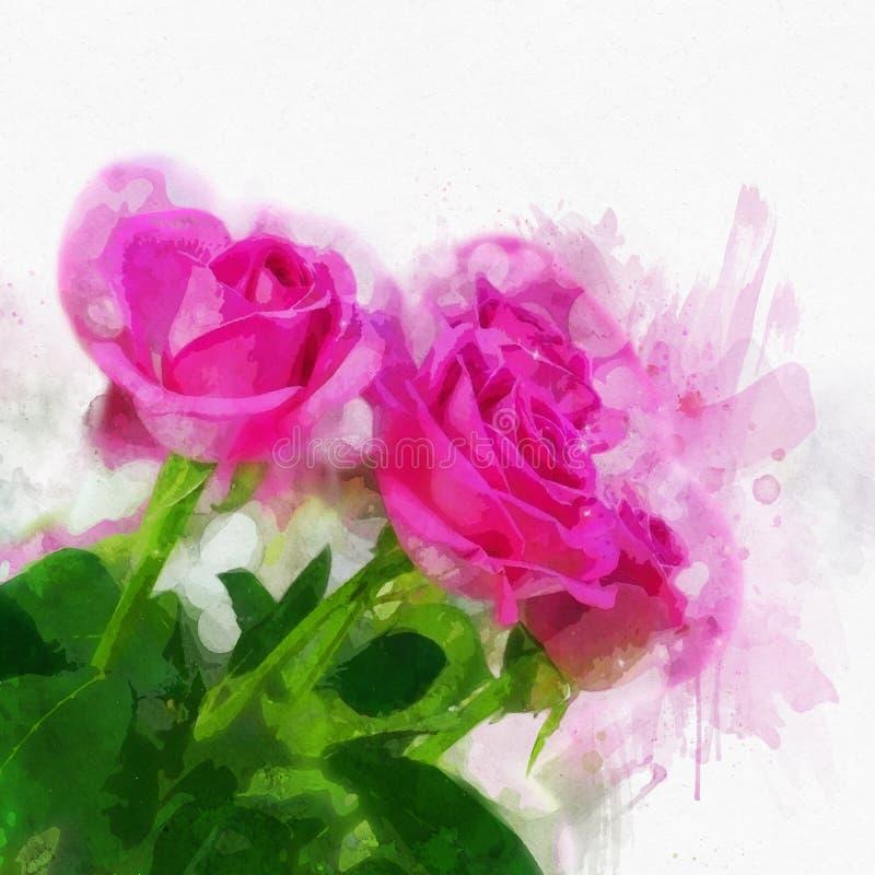 Rosas do Watercolour ilustração royalty free