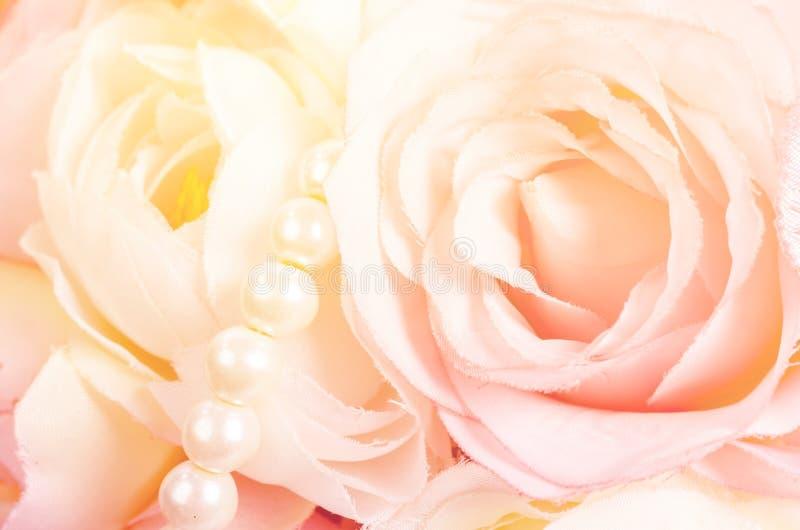 Rosas dulces del color imagen de archivo