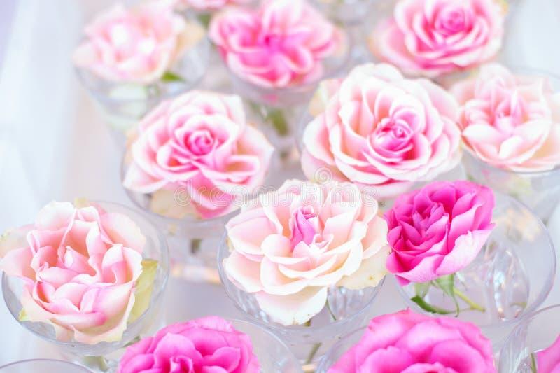 Rosas dulces del color en el estilo suave para el fondo foto de archivo