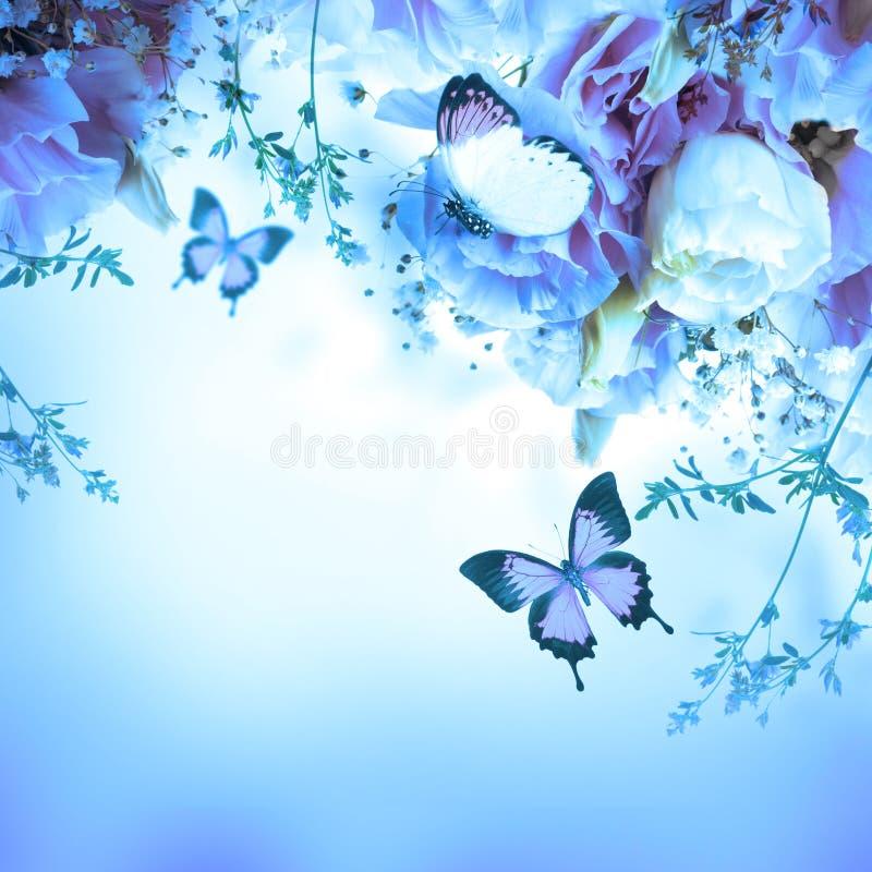 Rosas e borboleta cor-de-rosa, fundo floral ilustração do vetor