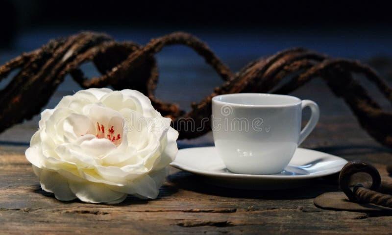 Rosas e chá, copo branco, estações foto de stock royalty free